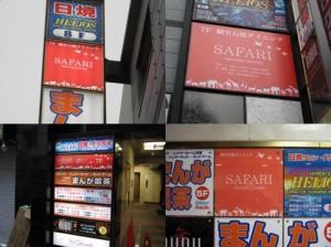 safari12